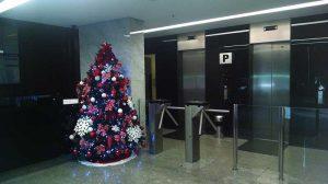 Aluguel Arvore Natal Condomínio