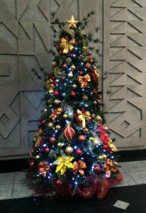 Aluguel Arvore Natal Empresa